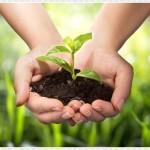 Bonifiche ambientali: il team di Beetaly gestisce qualsiasi intervento di bonifica di siti contaminati