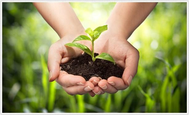 bonifiche-ambientali-intervento-bonifica