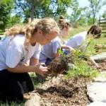 Dedicarsi al giardinaggio: terreno, alberi e fiori