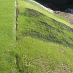 Viresco: controllo dell'erosione e rinverdimento